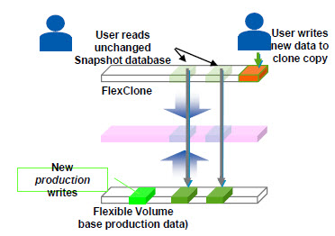 netapp_networking_protocols_08_flexclone